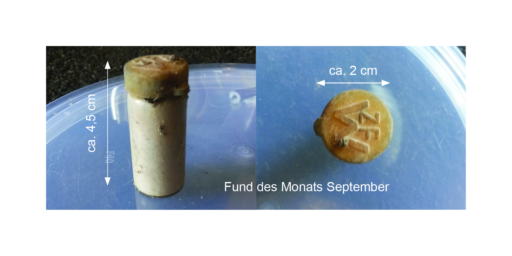 Fund des Monats September